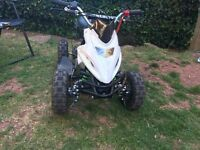 50cc mini quad bike