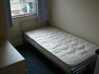 Single room in excellent house close to Queens University and City Centre