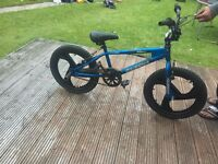 Big Daddy and Silver Fox BMX Bikes For Sale
