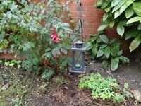 Set of 4 Outdoor Lanterns