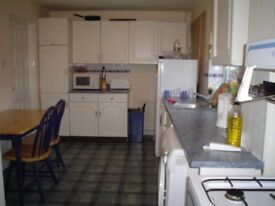 Warm & homely FOUR bed house available - Stevenage