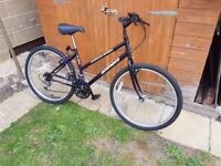 Ladies Ammaco Road Cycle in good condition