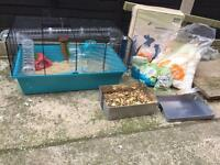 Hamster cage, Syrian hamster and accessories for sale
