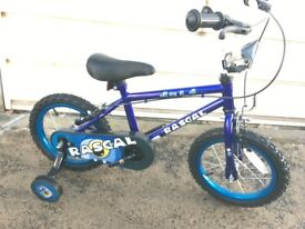 Sonic Rascal Kids Bike