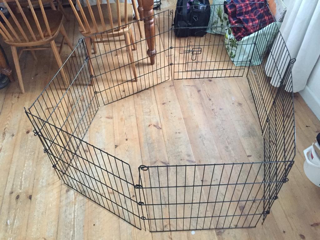 Easipet Metal pet enclosure with door roughly 2m2 60cm high