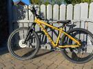 Brand new carrera bike