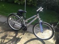 (LADIES MOUNTAIN BIKE GREAT BIKE 21 GEARS) RIDES WELLL JUST SERVICED (GOOD BIKE FOR A STUDENT)