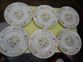 Dinner plates, set of 6 plates