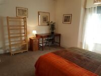Huge double room for single occupancy