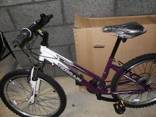 Terrain Snowdon girls mountain bicycle (brand new)