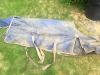 Blue medium weight filled horse turnout rug, 6'3, great condition!