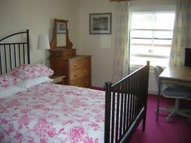 Large room in large house in Leominster