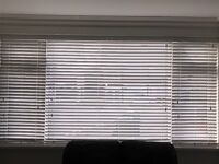 White gloss window blinds