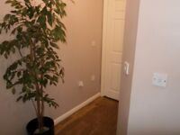 TWO BEDROOM FLAT IN CRAWLEY LOOKING FOR ONE BEDROOM IN AND AROUND LONDON.
