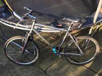 Mtrax adult 24 speed