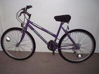 "Ladies/Womens Universal Rapid Reactor 19"" Mountain Bike (will deliver)"