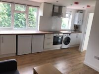 Modern 3 Bedroom Flat (Brand New)