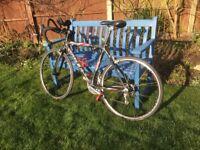 Trek WSD 5200 Road bike (Women's specific design)