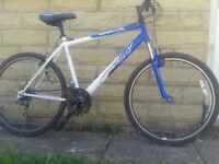 Adults Suspension MTN Bike, Large 20In Frame, 26in Wheels, 18spd, White/Blue