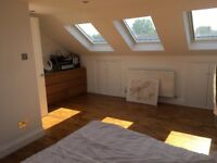 Very spacious and very bright bedroom to rent in newly refurbished house