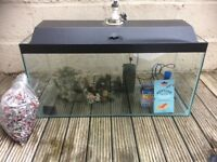 Fish tank with accessories