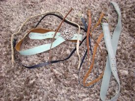 Collection of belts. Next etc. Size 10-12. Can be posted or collect from Torquay. £1.00
