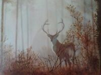 Framed Print Of Stag In Forest. 87 x 66 cm.