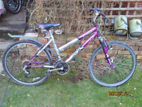 SFX AMAZON SILVER FOX MTB ONE OF MANY QUALITY BICYCLES FOR SALE