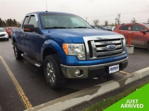 2009 Ford F-150 **Low kms!  5.4L!**
