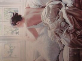 Rob Hefferan signed and framed limited edition print 'Ellegance ll' number 185 of 395