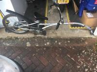Safe rider bike trailer