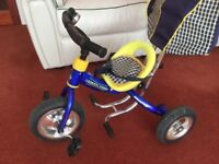 Childs canopy trike