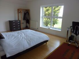 Large, Double, En-Suite Room Available