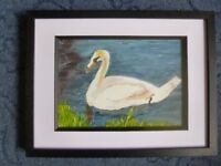 Swan on the Exe - original painting in acrylics. Framed size 43cm by 33 cm