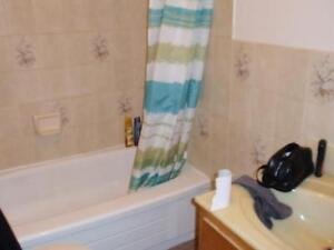 Central Halifax Modern Bachelor-Heat. HW, Incl NO PARKING-