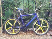 Townsend Limited Edition 90s Old School Mountain Bike - 20 inch, 21 speed Shimano - Serviced