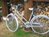 Retro Bikes Two, used as garden feature or display