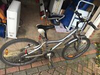 Bike (giant) mountain bike