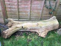 Large log.