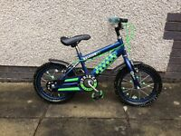 Boys Raleigh Bike brilliant condition!