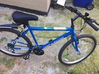 Bike / outdoor bike shed / helmet / pump