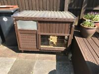 Rabbit or guinea pig outdoor hutch