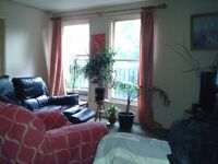 Double Room in 2Bed flat off Whiteladies £140/week inc bills - could be a halfway house