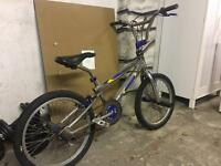 Vintage Ammacco Snapper and X Games BMX