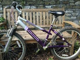 """Childs mountain bike cycle 15"""" frame. Good working order."""