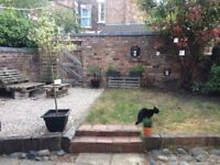 Room in friendly Allerton house inc private lounge and all bills 390pcm