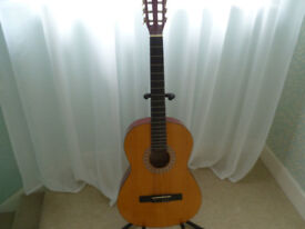 Acoustic Guitar & Stand