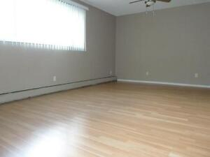 Newly renovated 2BD with balcony and free internet!!! SD 350 Edmonton Edmonton Area image 5