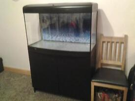 Marine / Tropical 180 litre aquarium with full filter system and cabinet