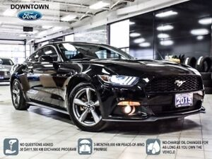 2015 Ford Mustang Premium, Navigation, Trade-in, Leather Pack